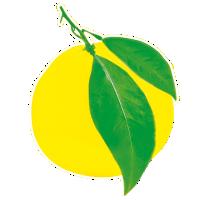 lemona.png